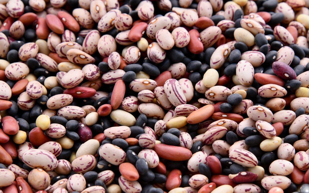 Love Your Legumes!