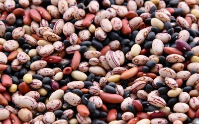 Love Your Legumes!